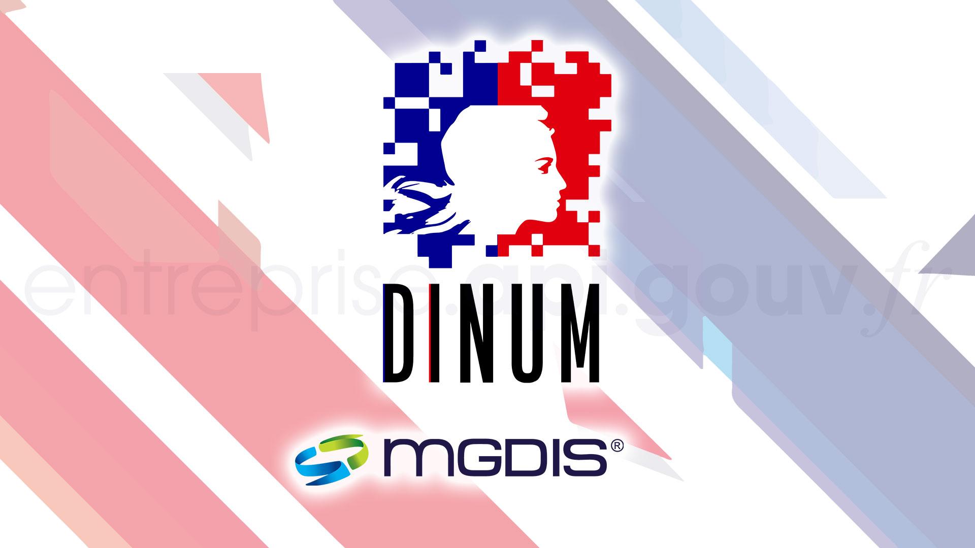 API Entreprise de la DINUM dans le logiciel MGDIS Portail des Aides