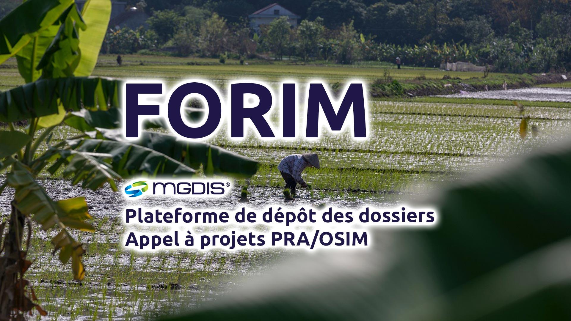 FORIM-MGDIS-2021